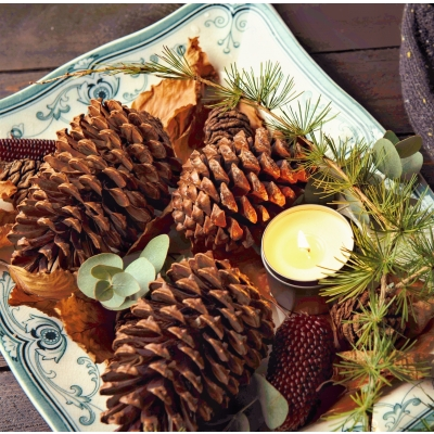 5 soovitust loodussõbralikeks jõuludeks